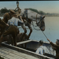 a27loadingn horse in boat_web.jpg