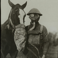 a33horse with gas mask-web.jpg